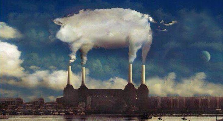 Recreación Animals de PInk Floyd. Alimentación y cerdo halal